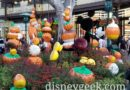 Pictures: Downtown Disney Halloween Decorations