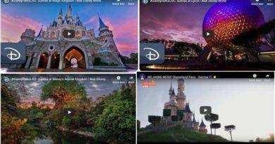 Disney Parks Sunrise Videos