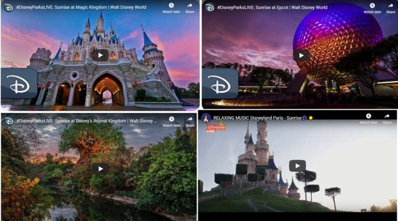Disney Parks Sunrise Videos