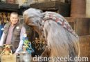 Chewbacca checking out some of the merchandise in the Marketplace of Black Spire Outpost
