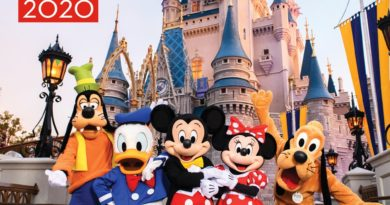 Birnbaum's Walt Disney World – The Official Vacation Guide 2020