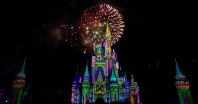 Festive Facts: Holidays at Walt Disney World Resort