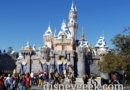 Disneyland Sleeping Beauty Castle this afternoon, almost ready for Christmas season