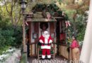 Pictures: Disneyland Critter Country Christmas Decorations