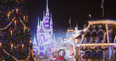 Disney Parks 2019 Holiday Celebration