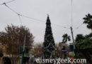 Buena Vista Street  Christmas Tree this cloudy afternoon