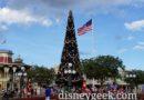 Magic Kingdom Town Square Christmas Tree