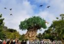 Arrived at Disney's Animal Kingdom as Winged Encounter Arrived