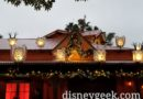 WDW Pictures: Discovery Island Christmas Lights at Disney's Animal Kingdom