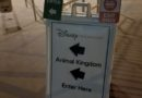 Several signs to direct traffic at the Epcot Bus Stop for Animal Kingdom