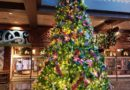 WDW Pictures: Polynesian Lobby Christmas Decorations