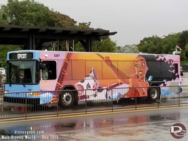 Moana Bus