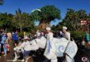 Merry Menagerie @ Disney's Animal Kingdom