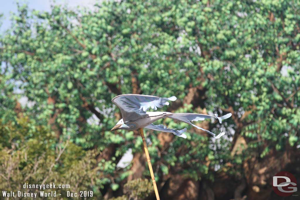 Merry Menagerie @ Disney's Animal Kingdom - bird