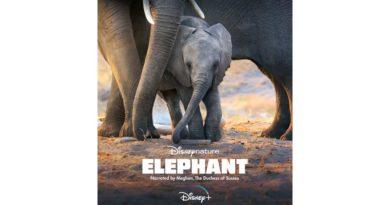 Disneynature - Elephant on DisneyPlus
