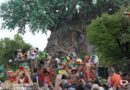Disney's Animal Kingdom Anniversary