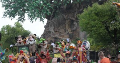 Disney's Animal Kingdom 15th Anniversary