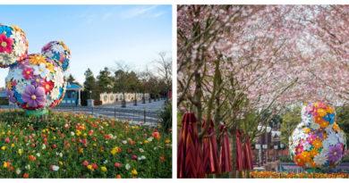 Shanghai Disneyland - Spring Colors 2020