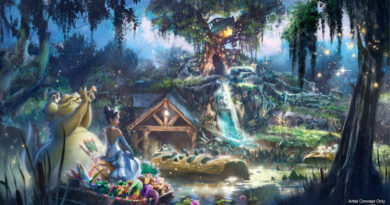 "Splash Mountain in Magic Kingdom Park at Walt Disney World Resort in Lake Buena Vista, Fla., will soon be completely reimagined, inspired by the animated Disney film ""The Princess and the Frog."" Guests will join Princess Tiana and Louis on a musical adventure as they prepare for their first Mardi Gras performance, featuring some of the powerful music from the film. (Disney)"
