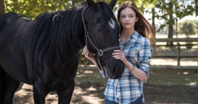 """Black Beauty"" On Disney+ Later This Year"
