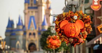 Fall Decor at Magic Kingdom Park