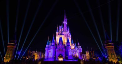 Cinderella Castle - Lakers