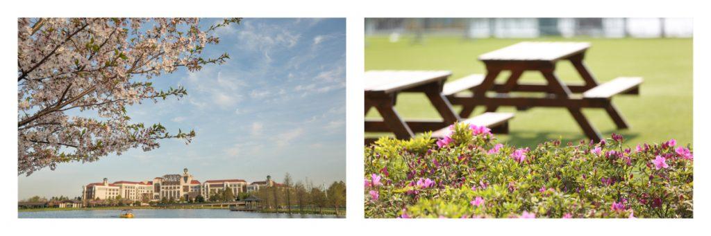 Shanghai Disney Resort Spring 2021