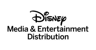 Disney Media & Entertainment Distribution