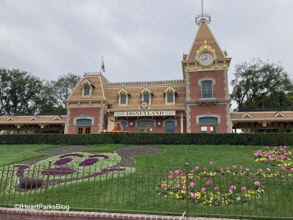 Disneyland Floral Mickey