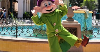 Pictures & Video: DCA Characters & Entertainment