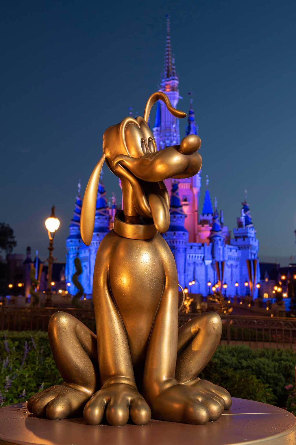 """Pluto at Magic Kingdom Park is one of the """"Disney Fab 50"""" golden character sculptures appearing in all four Walt Disney World Resort theme parks in Lake Buena Vista, Fla., as part of """"The World's Most Magical Celebration,"""" beginning Oct. 1, 2021, in honor of the resort's 50th anniversary. (David Roark, photographer)"""