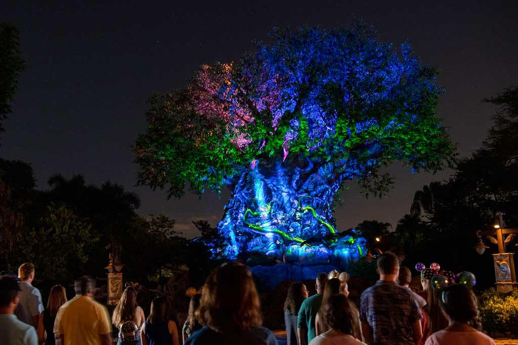 A warm light emanates from the Tree of Life when it transforms into a Beacon of Magic at Disney's Animal Kingdom Theme Park at Walt Disney World Resort in Lake Buena Vista, Florida, as part of the resorts 50th anniversary celebration. (David Roark, photographer)